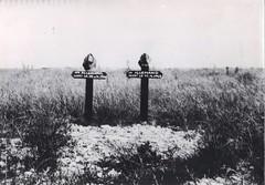 39- BM 2 1945 Devant Royan- tombes allemandes - Fonds Amiel