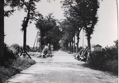 22- 15 avril 45 Attaque du BM2 sur Royan-  route de Didonne - sortie de Didonne vers royan la route infernale - Fonds Amiel
