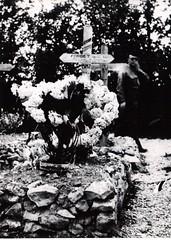 51- 29 juin 45- BM 2- Cimetière de Retaud - Tombe - de Denis  Forget -Fonds Amiel