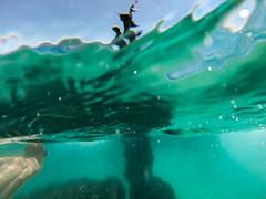 Freedive photo by Kyle Taylør