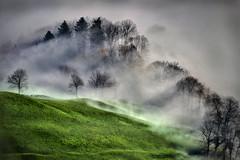 Creeping Fog photo by swPicture