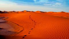 Erg Cheggaga Desert Camp, Sahara, Morocco photo by Dan Cosmin