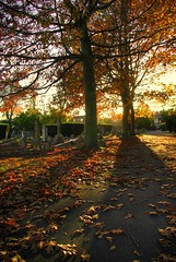 Old Ashford Cemetery in Autumn photo by Si Oliver Photography