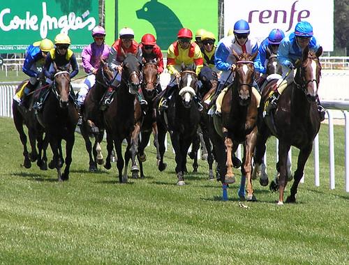 caballos de carreras. de caballos y carreras 11ª