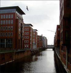 03_2006-Hamburg-Hafen6