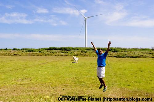 Bangui Windmills -020