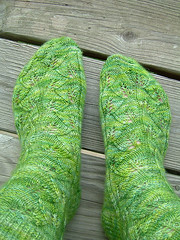 Finished Embossed Leaves socks
