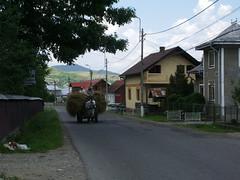 IMGP0933