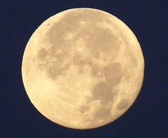 Luna / Moon CROPPED