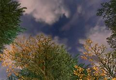 The sky in Mamook