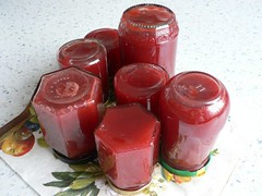 canned Plum and Red Currants SHF#22 004