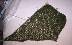 Mystery shawl 26-09-06