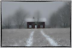 Old cottage with bird feeders photo by Patrik Estius