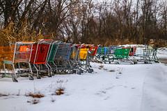 Amalgamated Carts - Day 23/Jan 23 photo by Wes Reder