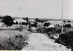 21-  15 avril 45 - Attaque du BM2 sur Royan-  Les moulins de Didonne- Fonds Amiel