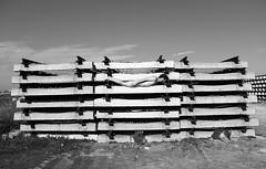 Untitled photo by Alía Achahchouh