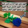 26237496734_5457ee3e09_t