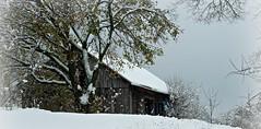 Barn on Congress Lake Road ~~~~ Christmas Eve photo by bjebie