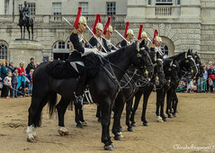 London Horse Guards Parade - Black horse sticking its tongue out photo by Cloudwhisperer67