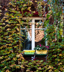 Reflet fenêtre photo by jfgornet