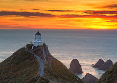 A Brilliant Dawn At Nugget Point Lighthouse photo by glness