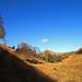 Autumn in Chew Brook