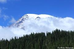 Mt. Rainier in Summer photo by Dex Horton Photography (Dos Con Mambo)