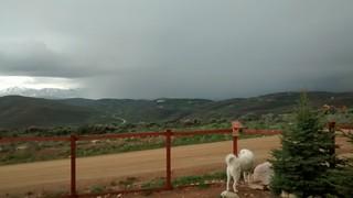 Rain is coming Mavis