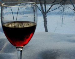 Reflections in a glass of red photo by Renee Rendler-Kaplan