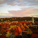 The Red Roofs of Meissen