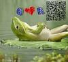 15277531514_c7cb2dd51b_t