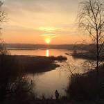 Sunrise over the pond<br/>23 Jan 2015