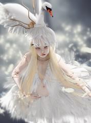 DOLLHOUSE: The Swan photo by -Fashion Teller House-