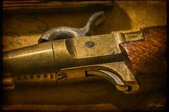 D750 Texture HDR Pistol 1339 photo by Del Hoffman-Thx 9.62 Million Views