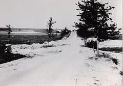 14- avril 45 - le BM2 devant Royan - le no mans land vers les liges allemandes - Fonds Amiel