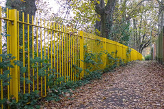 Autumnal fence off The Grove ~ South Farnborough photo by Fotorus