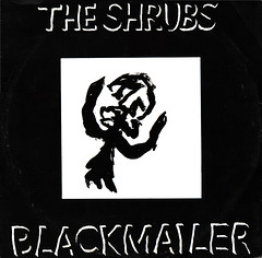 shrubs | blackmailer