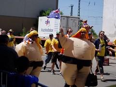 Aussie Sumo