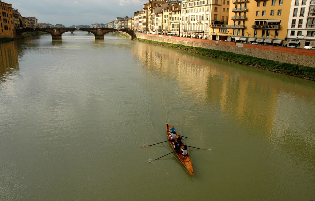 sculling on the arno river 2