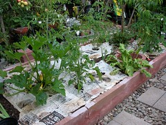 Veggie Bed #1 with Newspaper (Before)
