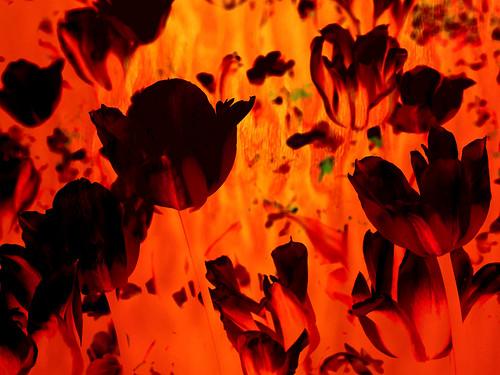 Teardrop ~ Massive Attack
