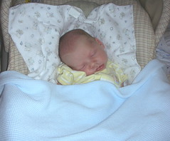 Matthew 3 1/2 weeks - sleeping in his carseat.  8/13/06.