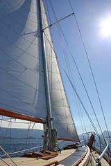 Tuan under sail