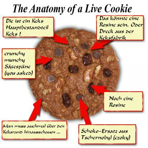 COOKIE ANATOMY