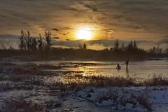 Winter games on lake Cerknica photo by marko.erman