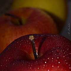 Red apple with drops bokeh effect               (Thanks EXPLORE) photo by A.Baldi