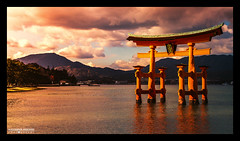 The great torii of Itsukushima Shrine photo by Alexander.Weichsel.Photography
