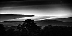 Fog photo by ...She