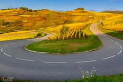 Route des Vins, Turckheim photo by Philippe Dehennin