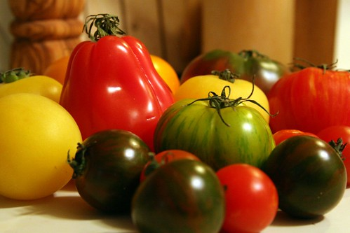 Heirloom Tomatoes Before They Meet Their Fate